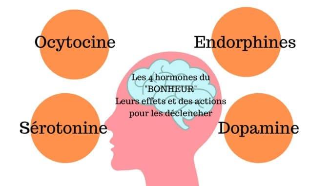Les hormones du bonheur (image Apprendre à Eduquer)