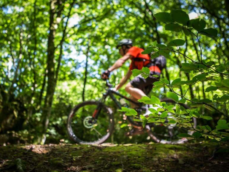 Profitez de la nature autant que vous le pouvez (image France Vélo Tourisme / O.Octobre)